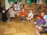 Regenwaldfest