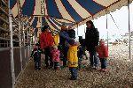 Besuch beim Zirkus Krippe