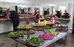 drusisches Salatbuffet